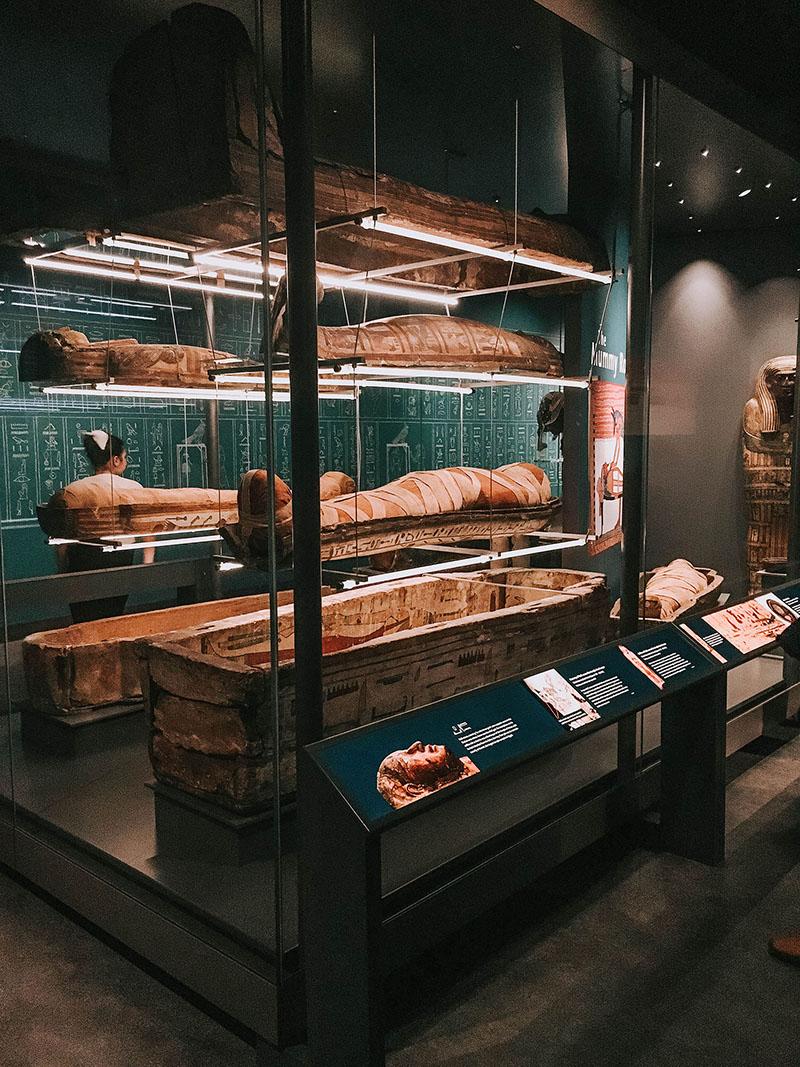 World museum liverpool, mummy room