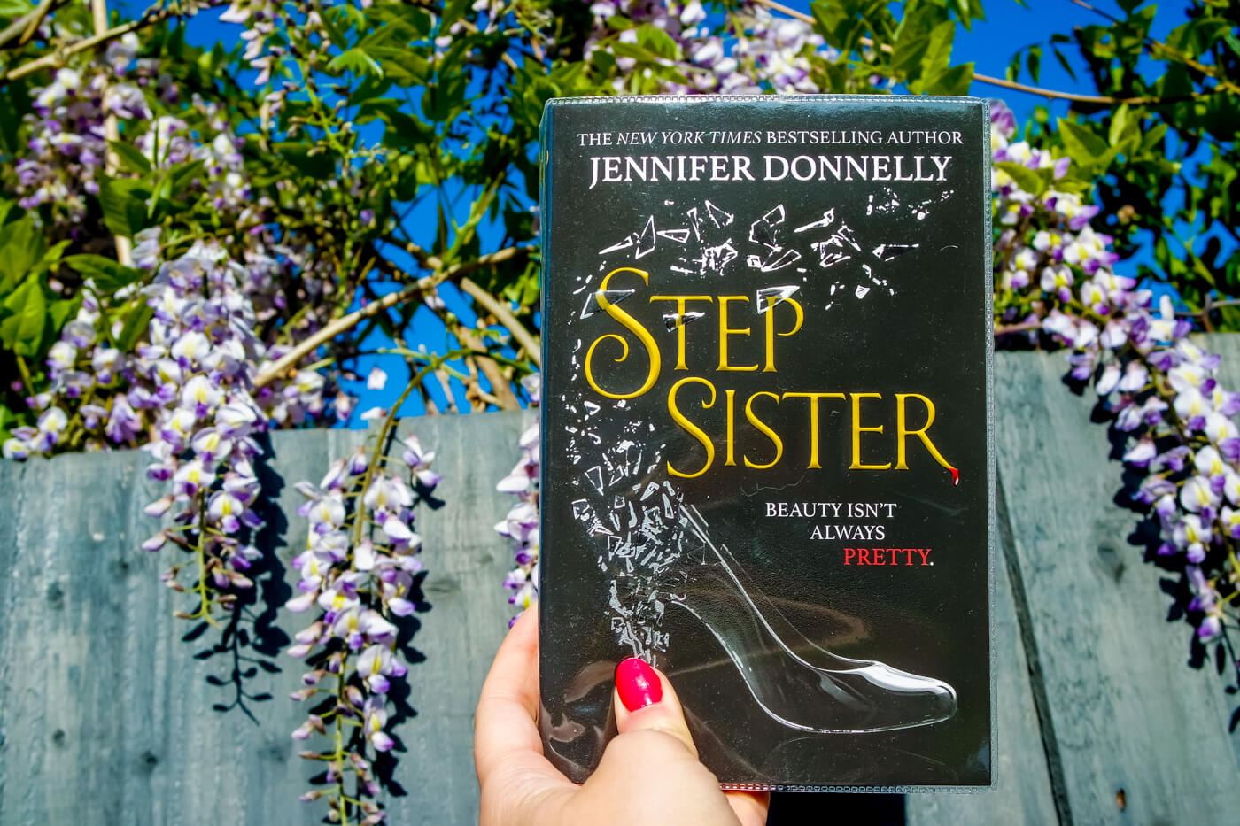 Step Sister by Jennifer Donnelly Book Cover